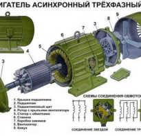 Устройство асинхронный двигатель с короткозамкнутым ротором схема